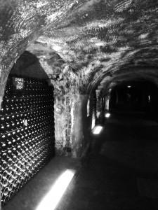 Moët & Chandon Cellar