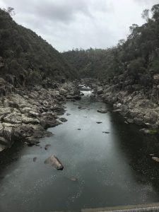 Another view of Cataract Gorge