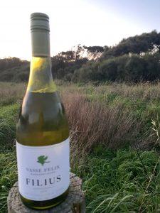 Picture of a bottle of Vasse Felix Filius Chardonnay outside